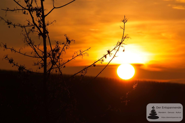 #Fotomontag 21/3 Schönste Weinsicht 2020 Rheinhessen bei Sonnenaufgang