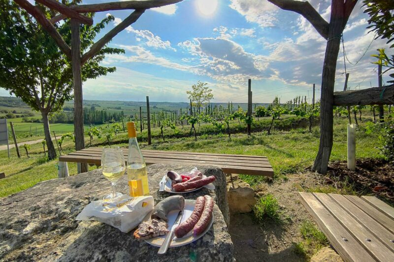 Picknick am Rastplatz am Bodenprofil Tonmergel (Hiwweltour Stadecker Warte)
