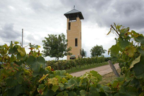 Vendersheimer Turm